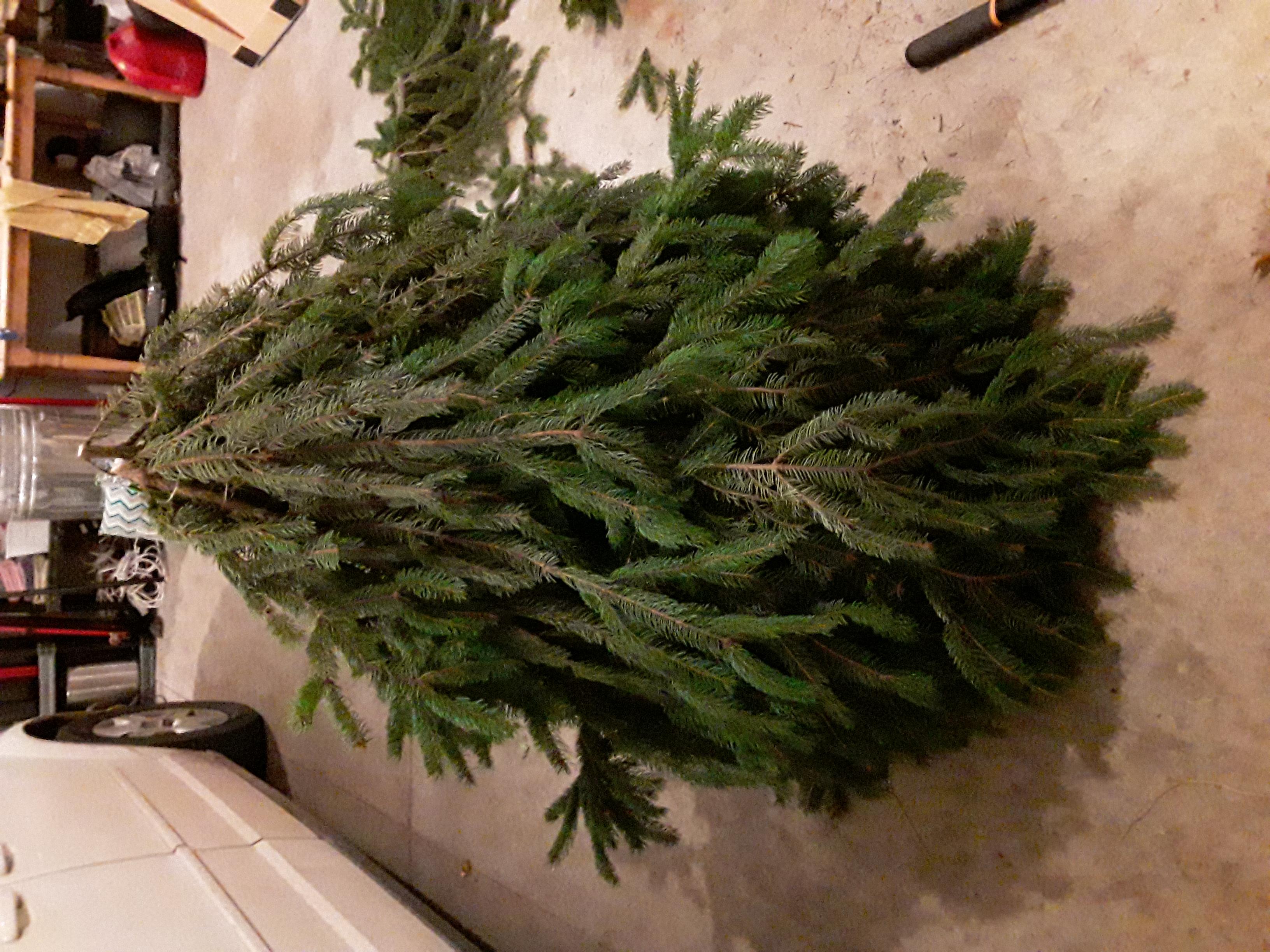 Diy Pine Tree Christmas Porch Gnome Crazy Diy Mom